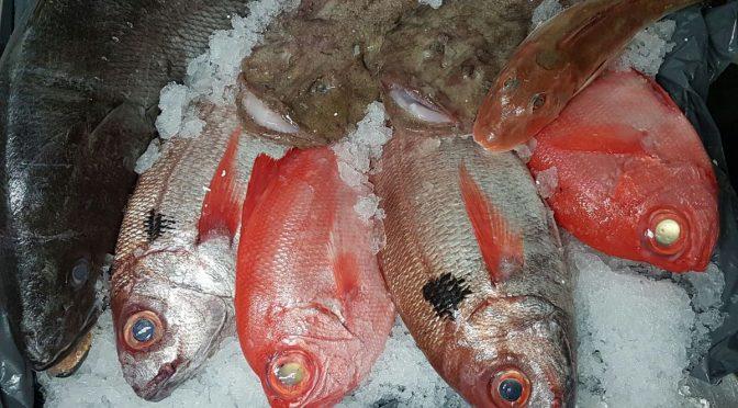 Cinco pescados imprescindibles en Ponzano, 12